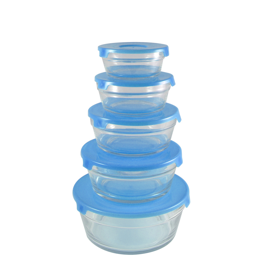 10 Piece Round Glass Bowl Set W Plastic Lids