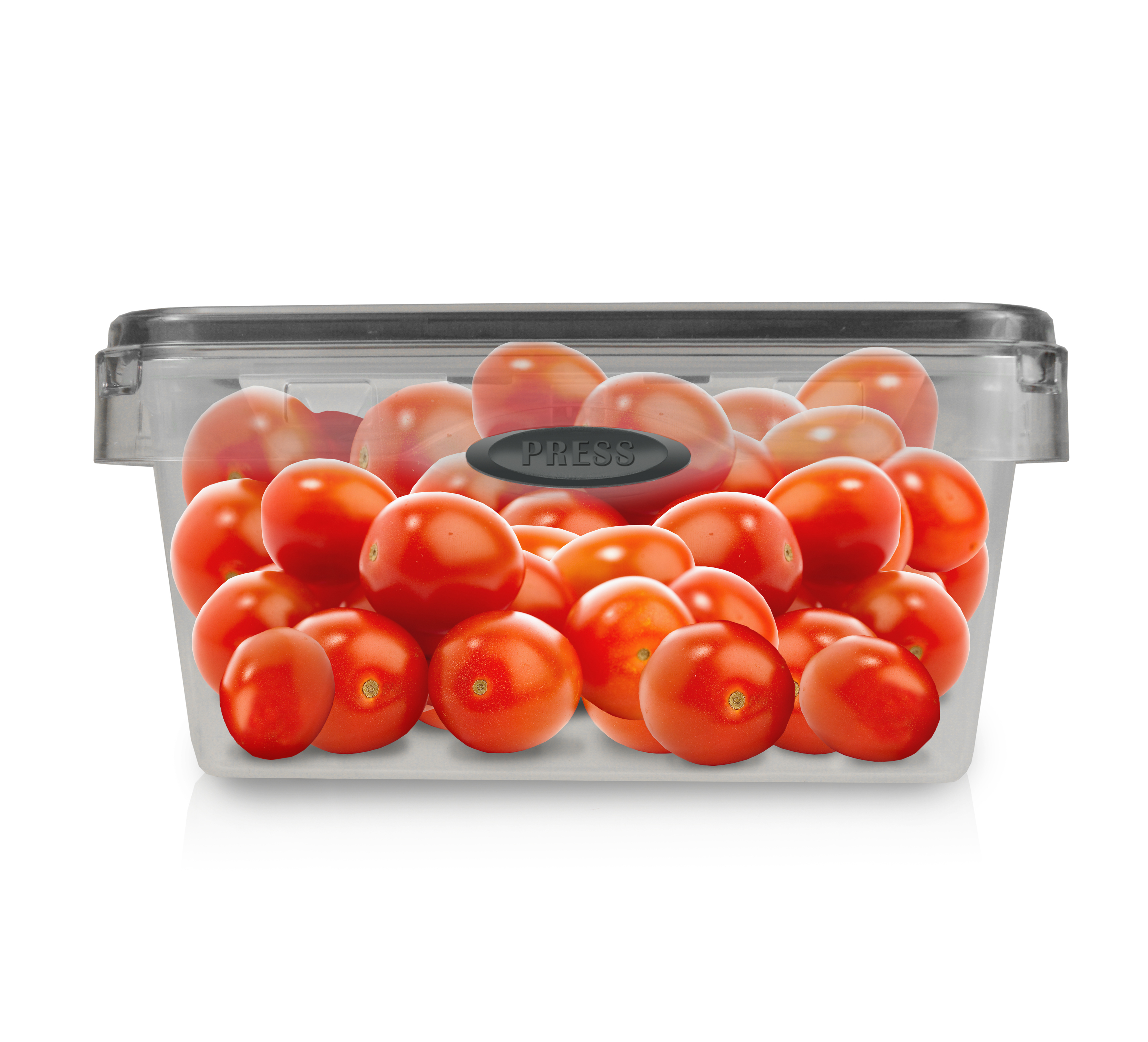 4.9 Cup Square Press N' Click Food Storage